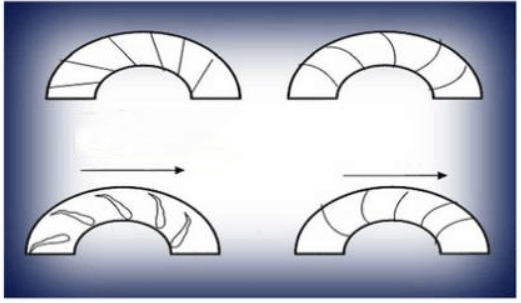 Four types of impeller
