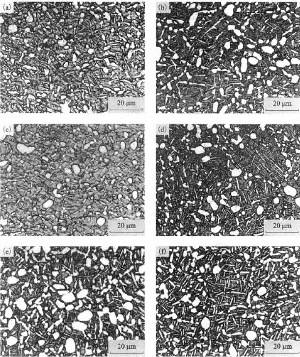The effect of aging time on the structure of TC21 alloy