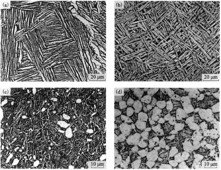 typical morphological characteristics of the various types of titanium alloys